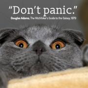 Don't Panic, meilleur conseil sur internet